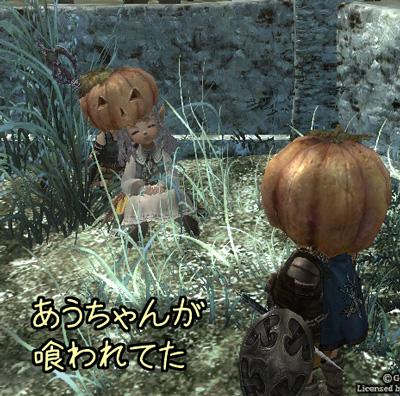 wo_20130207_9.jpg