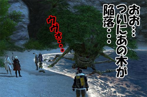 遂にあの木が陥落