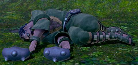 横たわるヒゲランダー