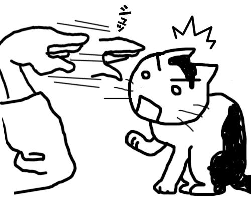 拳で猫と遊ぶイラスト