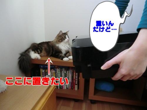 newprinter4_text.jpg