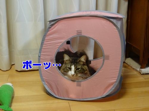 yohukashi5_text.jpg