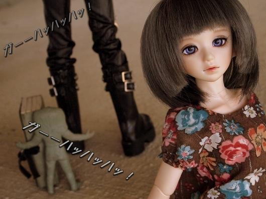 P1011973_20121107144111.jpg