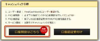 2013y02m04d_101159563.jpg