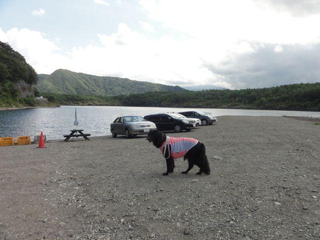 西湖のココ