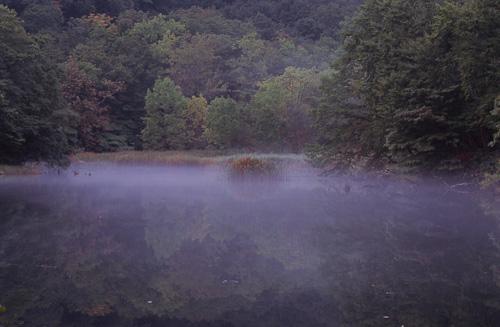 霧立つ沼1