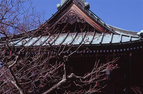 13-03鎌倉4