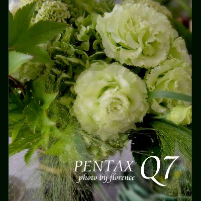 PENTAXQ7130904