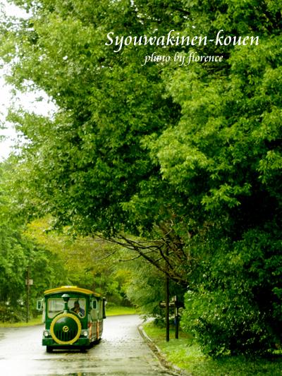 昭和記念公園131001