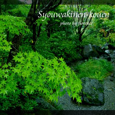 昭和記念公園131003