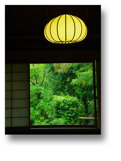 昭和記念公園131011