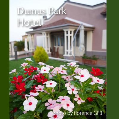 イタリア DOMUS PARK HOTEL140904