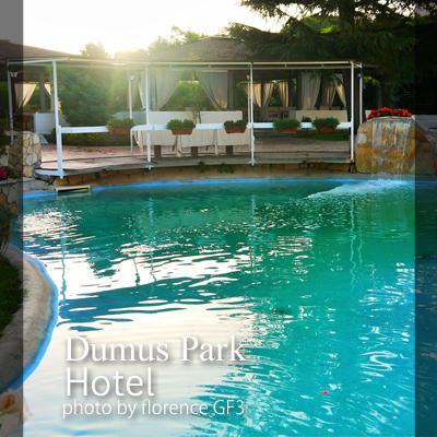 イタリア DOMUS PARK HOTEL140905
