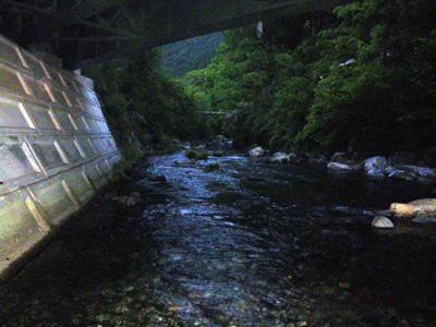 いつもの橋の下
