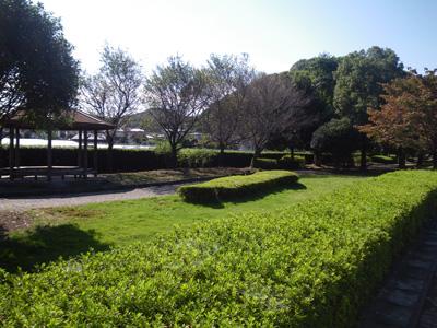 岡登緑道3