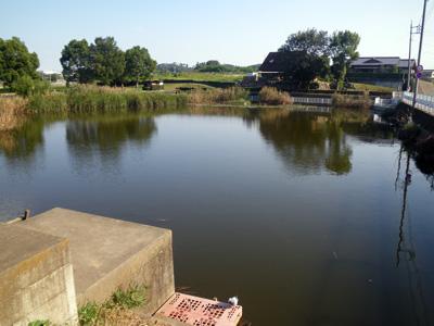 笠懸の野池