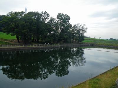 鹿田山フットパスの用水池