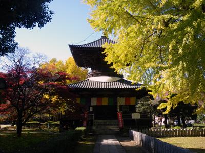 鑁阿寺の多宝塔