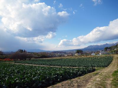 赤城と榛名と田園風景
