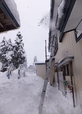 yukioroshi