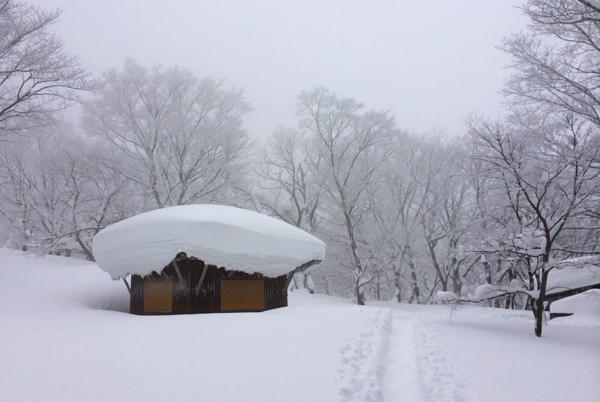 雪歩14012004