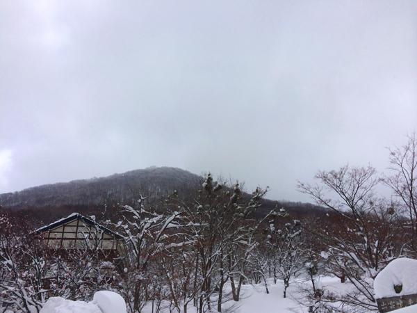 雪歩14012011