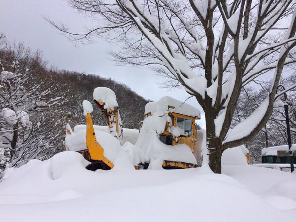 雪歩14012012