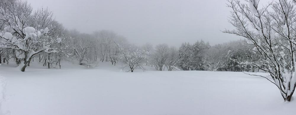 雪歩14012007