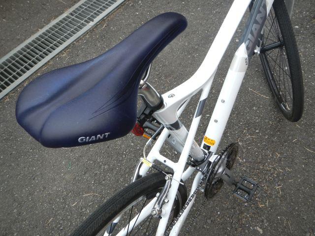 GIANT ARX1