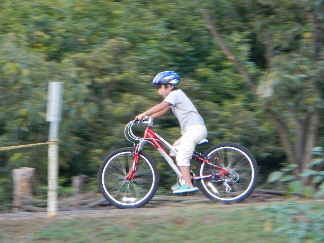 SCHWINN MIDI MESA (子供用自転車)