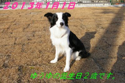 20130101ゆうゆ誕生日