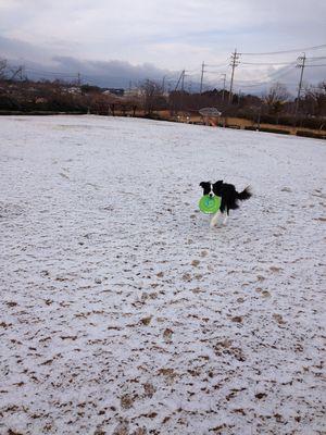 20130209アイぽん雪遊びその1