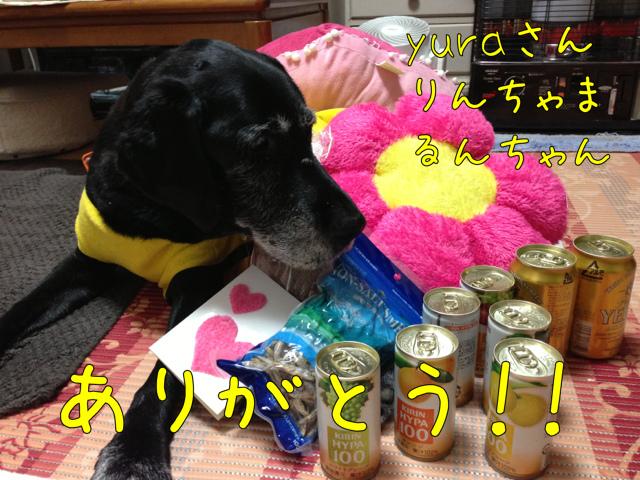 贈り物いろいろ (4)