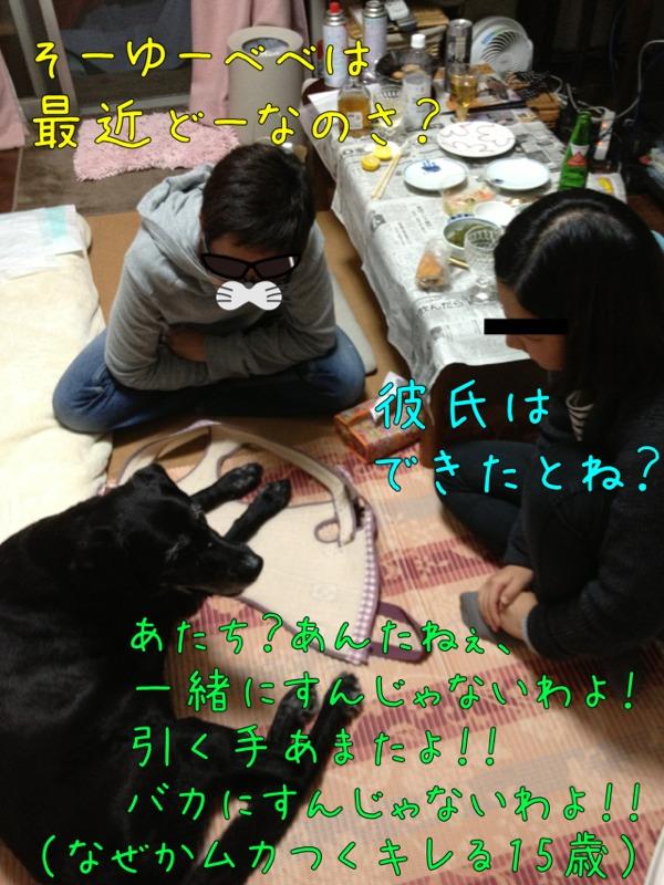 fc2blog_20121029175312988.jpg