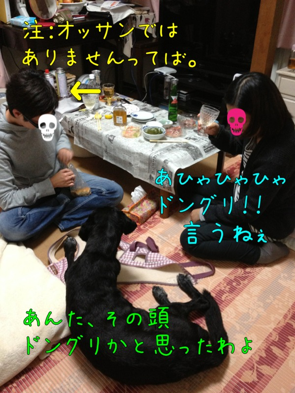 fc2blog_20121029234932544.jpg