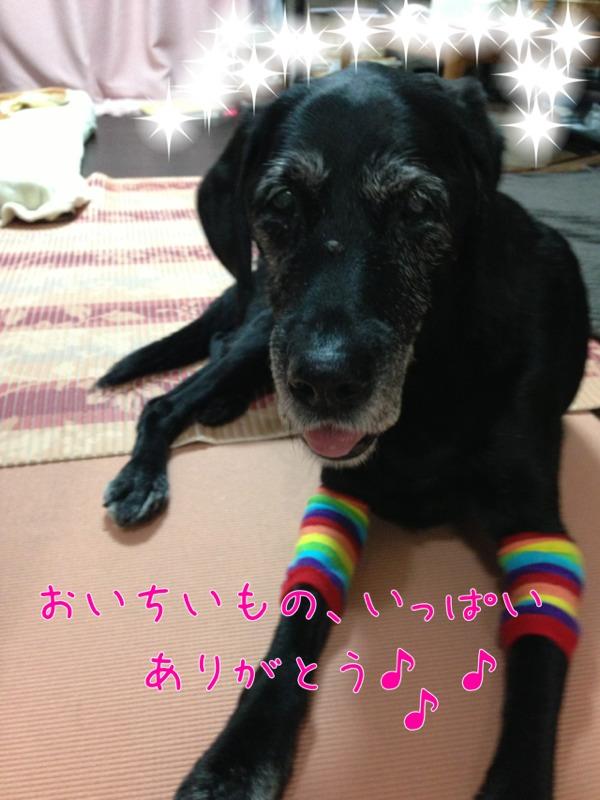 fc2blog_20121208150323e0c.jpg