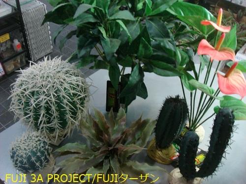 004_20120527112230.jpg