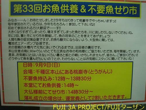 007_20120828115138.jpg