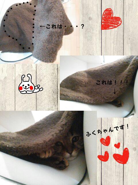 20_marofuku_0210.jpg