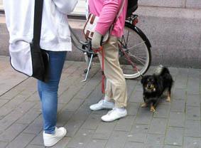 63_sweden_121001.jpg