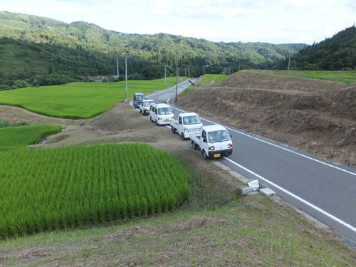 中川会員の水田風景 8.7.2012
