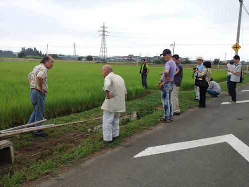 安川会員水田見学8.12.2012