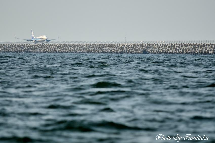 24727漁船クルージング (9)