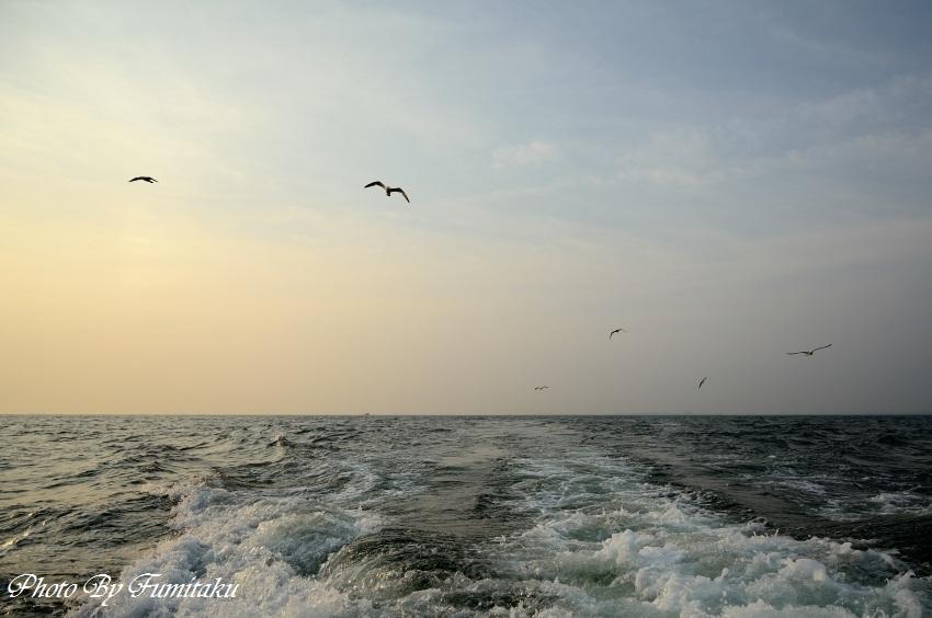 24727漁船クルージング (8)