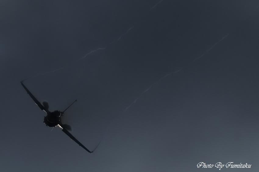 241028岐阜基地航空祭 (103)