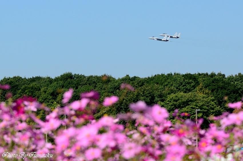 241028岐阜基地航空祭 (30)