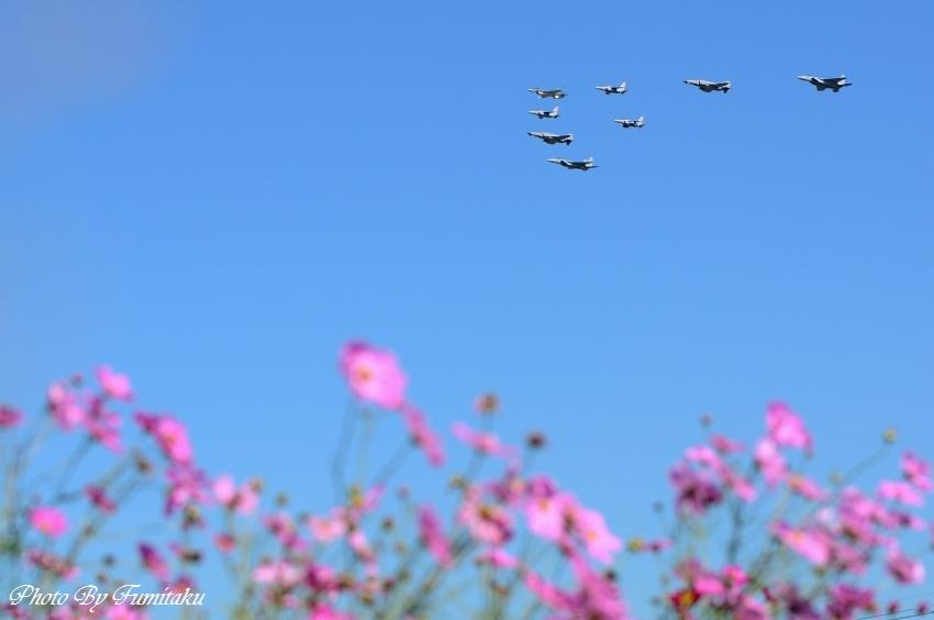 241028岐阜基地航空祭 (37)