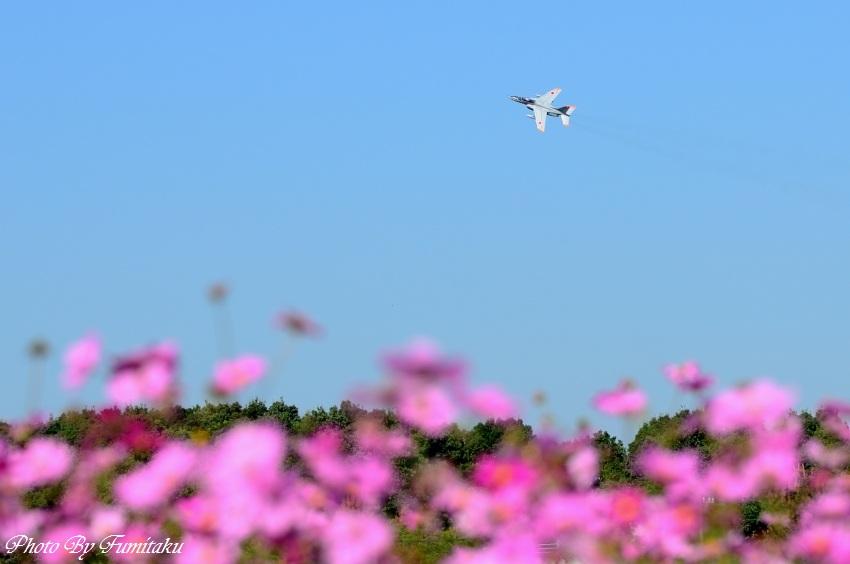 241028岐阜基地航空祭 (31)