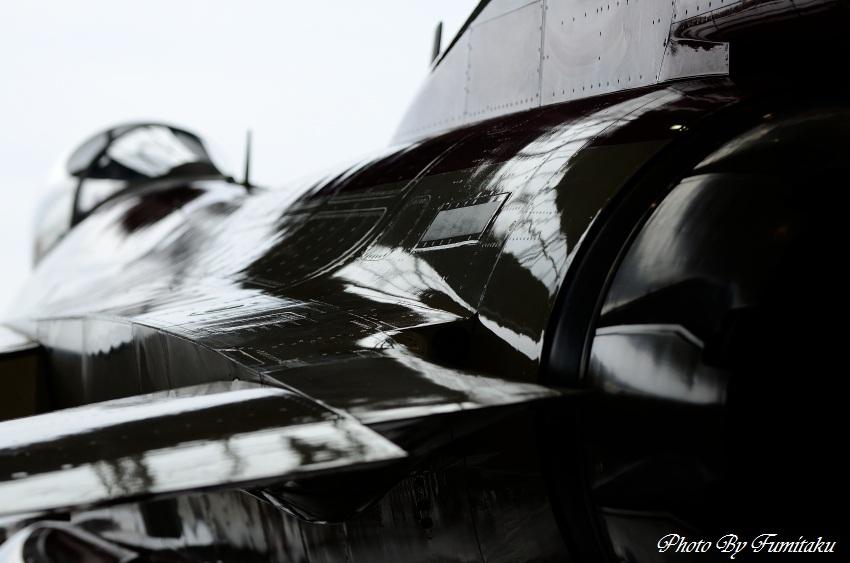 241028岐阜基地航空祭 (8)