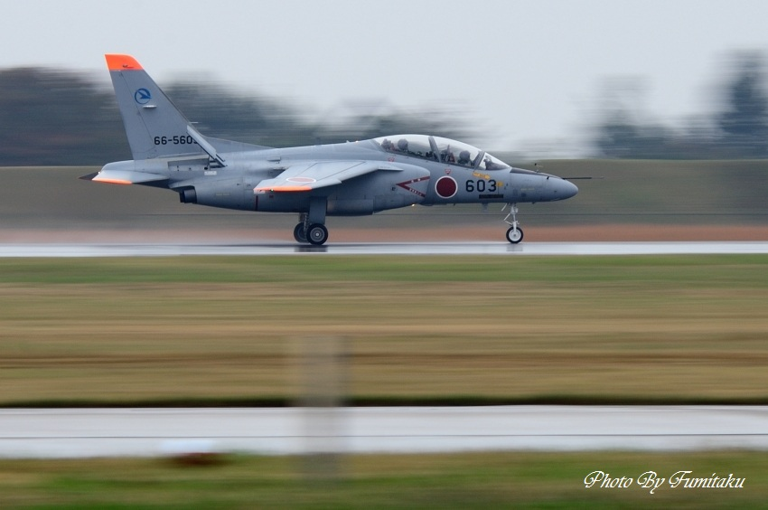 241028岐阜基地航空祭 (99)